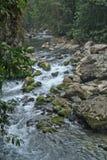 Rio em San Luis Potosi Imagens de Stock