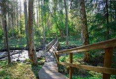 Rio em uma floresta com uma ponte pequena fotos de stock