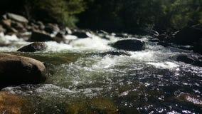Rio em Yosemite Fotografia de Stock
