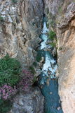 rio entre desfiladeiros Fotos de Stock Royalty Free