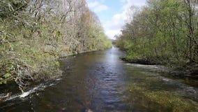 Rio Escócia Reino Unido de Glen Luss que alimenta na atração turística escocesa BRITÂNICA de Loch Lomond vídeos de arquivo