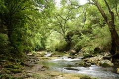 Rio Escanela dans Querétaro, México Photos stock