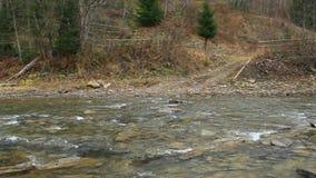 Rio estreito da montanha que flui na área montanhosa na floresta vídeos de arquivo