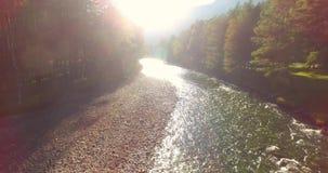 Rio fresco e limpo excedente de trajetória aérea meados de da montanha na manhã ensolarada do verão filme