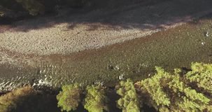 Rio fresco e limpo excedente de trajetória aérea meados de da montanha na manhã ensolarada do verão Movimento vertical vídeos de arquivo