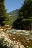 Rio Gega da montanha na Abkhásia, Cáucaso Fotografia de Stock Royalty Free