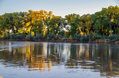 Rio Grande in Albuquerque. The Rio Grande flows through the Albuquerque Bosque in the middle of the city. The cottonwood trees are in full autumn ccolor royalty free stock images
