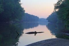 Rio grande em Grand Rapids Michigan fotos de stock
