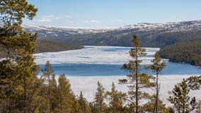Rio grande em Noruega fotografia de stock