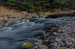 Rio grande, Flatrock, Terra Nova, Canadá Imagem de Stock Royalty Free