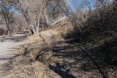 A Rio Grande hiking path along the river in New Mexico. A Rio Grande hiking path as seen just below Elephant Butte Dam. The water level is very dry at this point stock photography