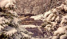 Rio grande na neve perto de Flatrock, Terra Nova, Canadá Imagens de Stock