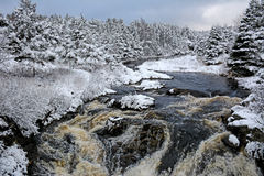 Rio grande nevado, Terra Nova, Canadá Fotografia de Stock