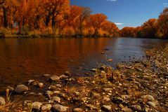 Rio Grande River. The amazing Rio Grande River in Fall royalty free stock images
