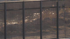 Rio Grande River through Border Fence. Looking at the flowing Rio Grande River through the fence at the border of the US and Mexico stock video