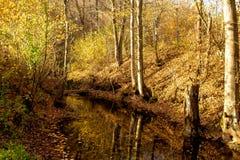 Rio Grza no autum imagens de stock