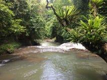 Rio indonésio na selva foto de stock