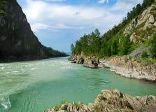 Rio Katun da montanha, Altai, Rússia Fotos de Stock Royalty Free