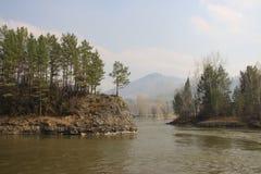 Rio Katun da montanha. Sibéria Imagem de Stock Royalty Free
