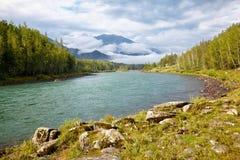 Rio Katun de Altai Fotografia de Stock