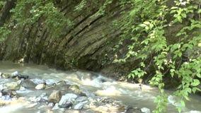 Rio Kuapse da montanha nas montanhas do Cáucaso norte filme