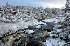 Rio mágico no inverno Foto de Stock Royalty Free