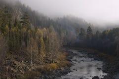 Rio Maliy Inzer. Bashkortostan. Ural do sul Imagem de Stock Royalty Free