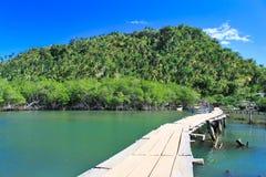 Rio Miel, Baracoa, Kuba Arkivfoton