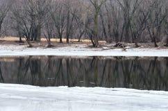 Rio Mississípi e madeiras gelados no parque de Crosby fotos de stock