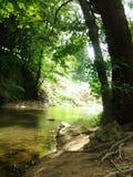 Rio Mlava Fotografia de Stock