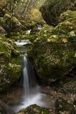 Rio Mundo źródło, Naturalny park Los Calares Del rÃo Mundo y De Los angeles Sima fotografia royalty free