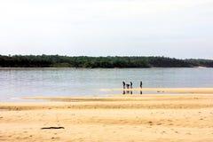 Rio murzyn Obraz Stock