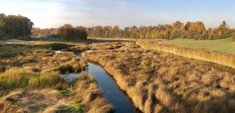 Rio Musa em Letónia imagens de stock royalty free