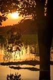 Rio na floresta úmida das Amazonas no crepúsculo, Peru, Ámérica do Sul fotografia de stock