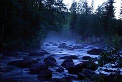 Rio na floresta Foto de Stock