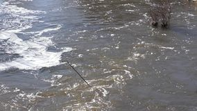 Rio na mola video estoque