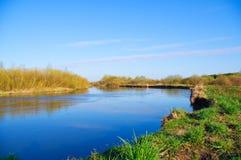 Rio na mola. Composição da natureza. Fotografia de Stock