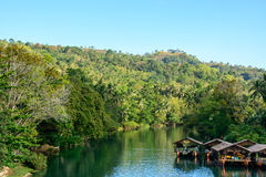 Rio na selva, ilha de Loboc de Bohol em Filipinas fotografia de stock royalty free
