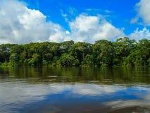 Rio Napo Royaltyfri Fotografi