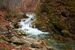 Rio nas montanhas Imagem de Stock Royalty Free