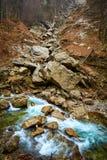 Rio nas montanhas Fotografia de Stock Royalty Free