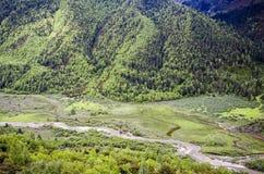 Rio nas montanhas Foto de Stock