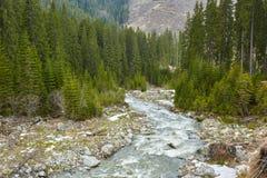 Rio nas montanhas Imagens de Stock