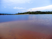 Rio Negro Fotografia de Stock Royalty Free