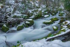 Rio nevado com rochas musgosos Fotos de Stock Royalty Free