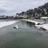 Rio nevado e oceano Fotos de Stock