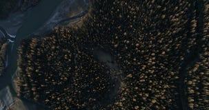 Rio no estepe de Kurai no Altai video estoque