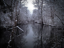 Rio no inverno Fotografia de Stock