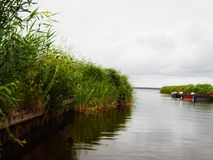 Rio no parque em Bielorrússia fotos de stock