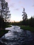Rio no parque nacional de Yellowstone Foto de Stock